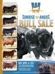 W Sunrise Angus Bull Sale