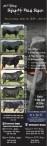 16th Annual Spady Bull Sale