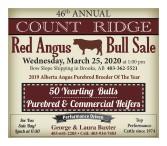 46th Annual Count Ridge Red Angus Bull Sale