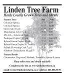 Linden Tree Farm - Hardy Locally Grown Trees and Shrubs