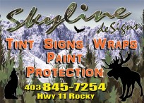 Skyline deSigns Tint Signs Wraps Paint Protection