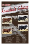 1st Annual Rancher's Choice Simmental Bull Sale