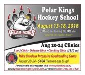 Polar Kings Hockey School