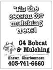 'Tis the season for mulching trees!