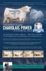 Footprint Farms Charolais Power 2021 Edition Bull Sale