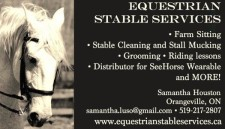 EQUESTRIAN STABLE SERVICES